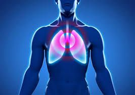 Bronchite aiguë : zoom sur cette maladie