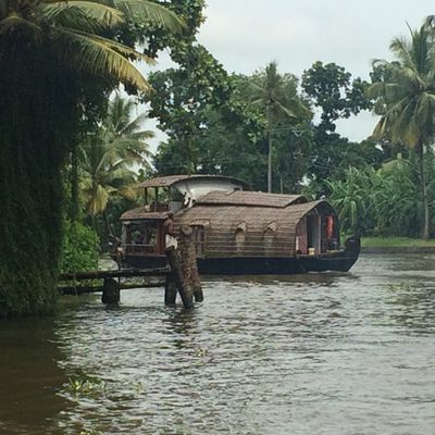House-boat à Alleppey