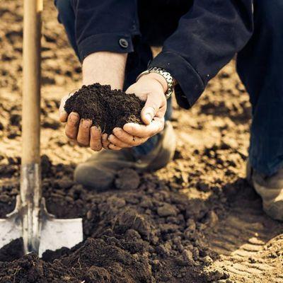Gamm Vert soutient l'installation des jeunes horticulteurs