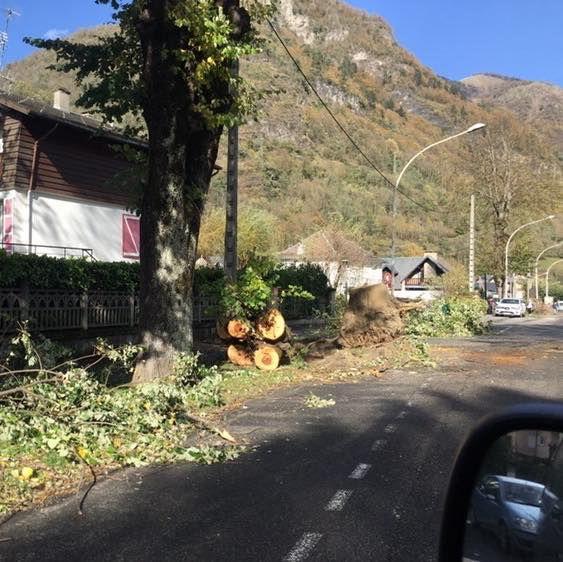 (Photo : Facebook @mlks_sport_sante_31 / Météo Pyrénées)
