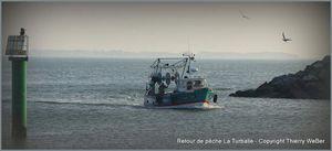 Retour de pêche - Port de La Turballe