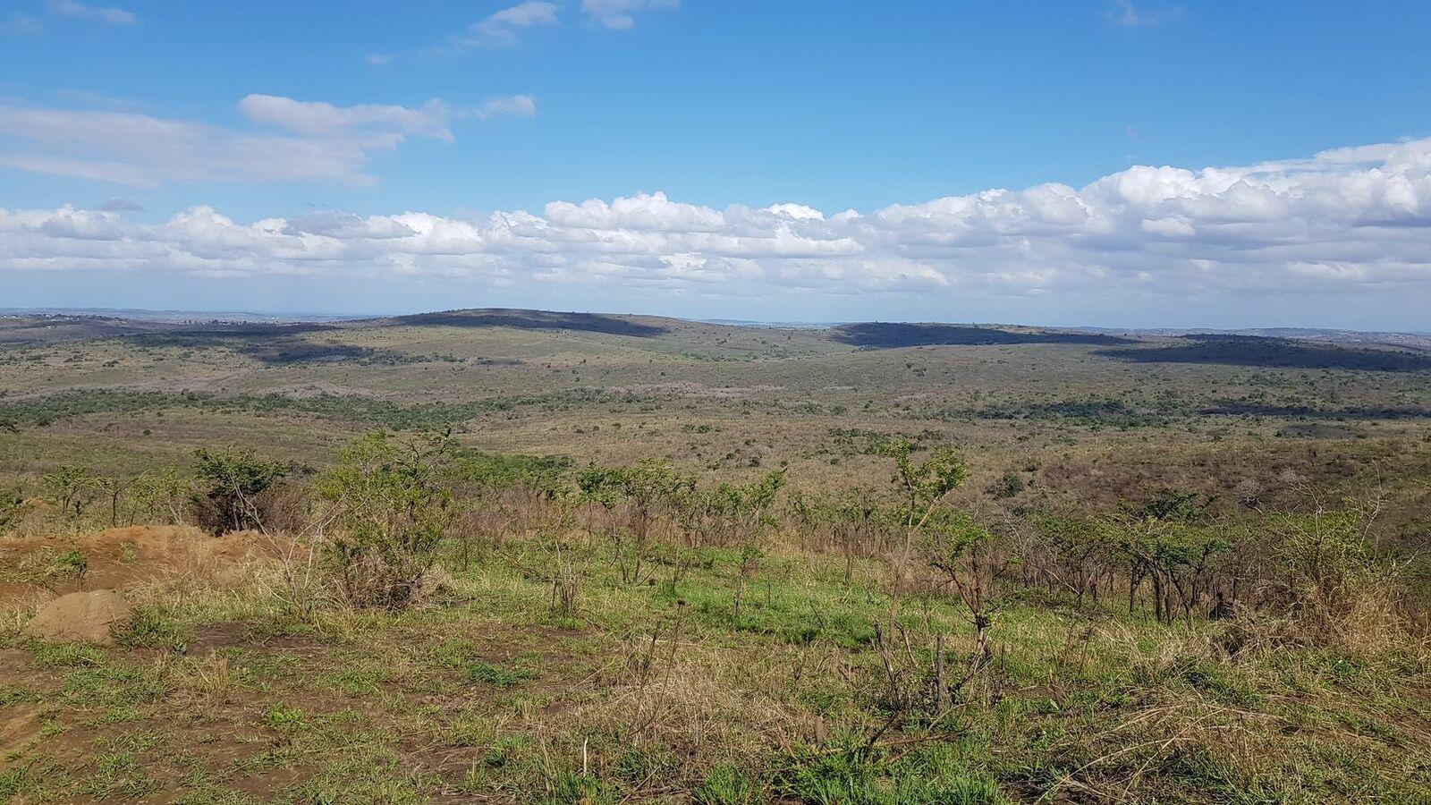 Afrique du sud : un début sur les chapeaux de roue !