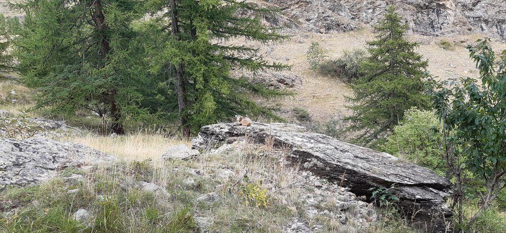 7/8 septembre 2019 : Canyons des Oules de Fressinières et Chichin