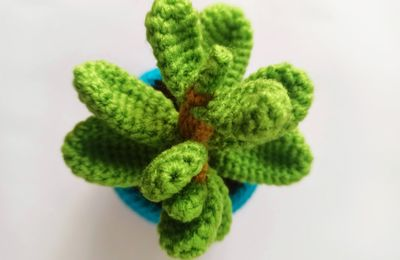 the serial crocheteuses & more n° 558 : une plante verte