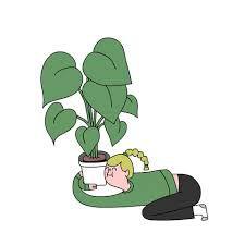 Soigner nos plantes /  Quelques tuyaux + lien RUSTICA