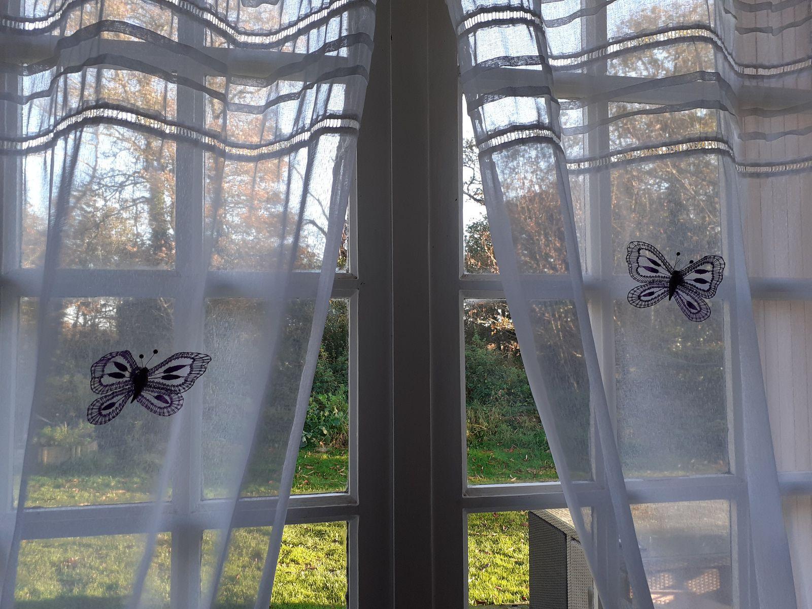les papillons de Françoise