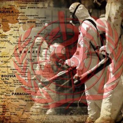 Zika: ou comment l'OMS transforme un virus banal en menace mondiale