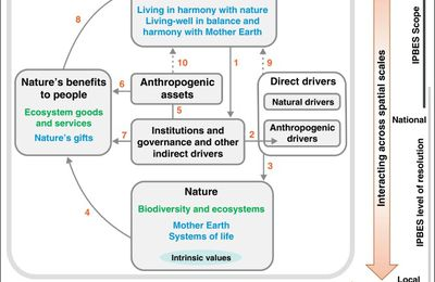 The IPBES Conceptual Framework — connecting nature and people
