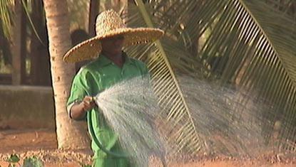 Au Sénégal , des maraîchers: Mayaka : ouvrière agricole ; ‒ Moussa Ciss : ouvrier agricole ; ‒ Gael Faye : agriculteur ; Ndèye Binta Dione : responsable de la commercialisation de la coopérative Sell Sellal.