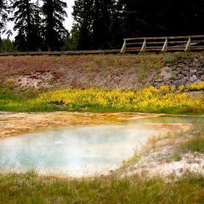 Le supervolcan du parc Yellowstone est actif