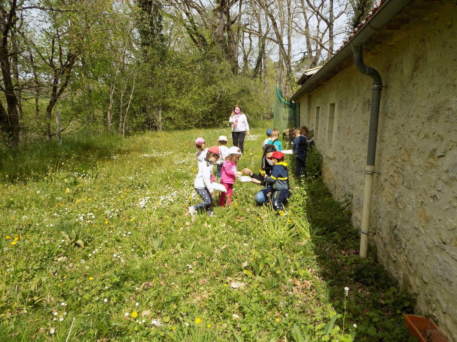 Sortie des maternelles Saint-Sylvestre à Trotte- Lapin