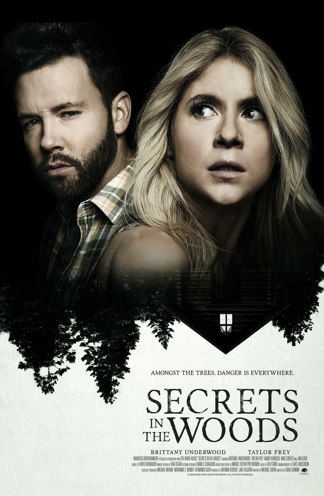 SECRETS IN THE WOODS