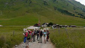 Randonnée botanique au col des Aravis avec la Sté Linnéenne le 6 juillet