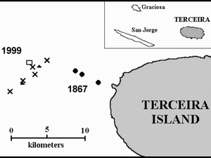"To the left, location of floating blocks and bubbles marking the eruption Serrata, off Terceira (cross: January 1999 - triangles: February 1999 - rectangle: March 1999 - location of eruptions in 1867:Black circles) Courtesy of the Center of Volcanology of the Azores University (CVUA). - To the right, ""lava balloons"" from the dorsal Serreta - courtesy of CVUA - 1999"