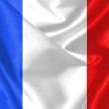Pour l'honneur des armes de la France