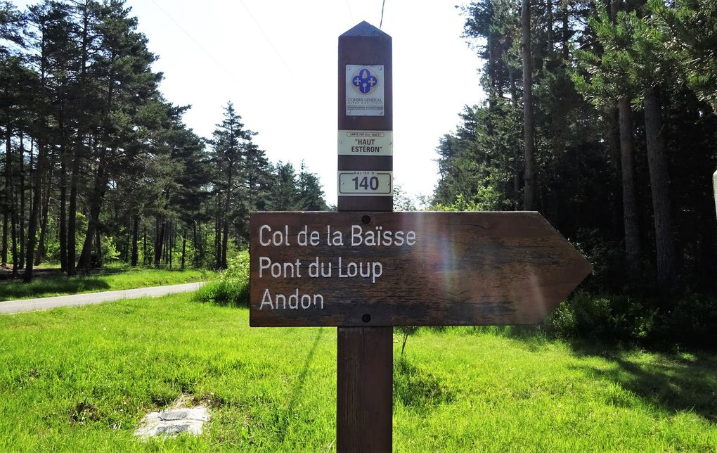 Thorenc - Balade Forestière