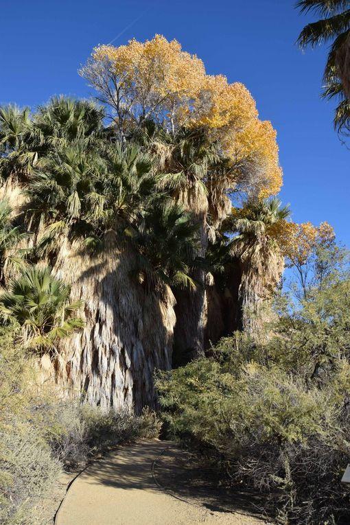 Los Padres, Malibu, Mojave, Joshua, Los Angeles