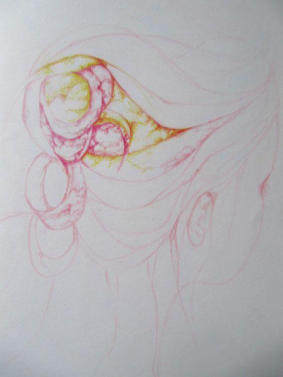 carnet de dessins , theme de la chevelure, crayons de couleurs, pastels , aquarelles sur papier