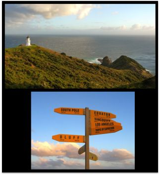 Northland and Bay of Islands … into to the wild