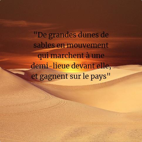 Montaigne par Lou - Dunes