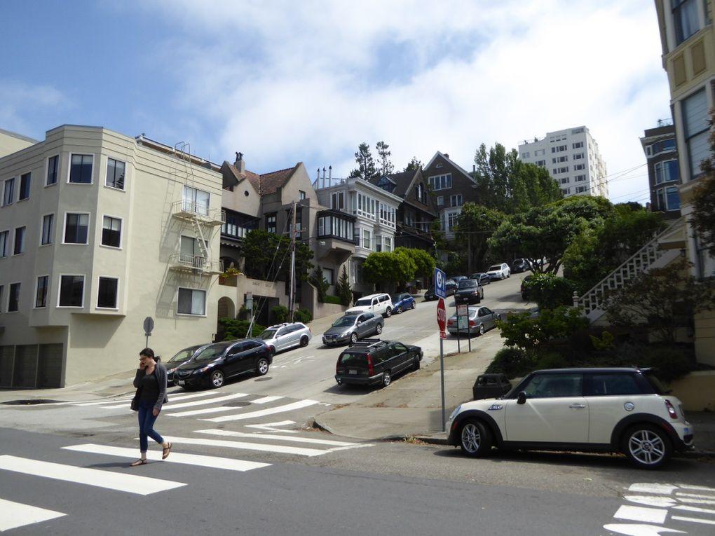Ouest-Américain, San Francisco - Printemps 2016.
