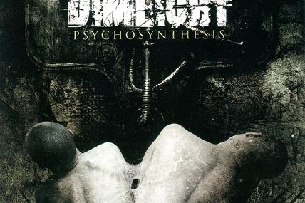 Dimlight - Psychosystesis
