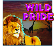 machine a sous mobile Wild Pride logiciel Booming Games