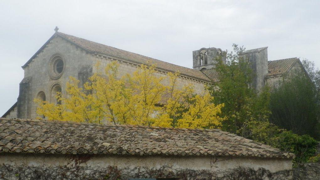 La Roque d'Anthéron au fil des canaux....