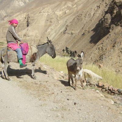 LA ROUTE DU PAMIR (3) : la vallée de Chok Dara