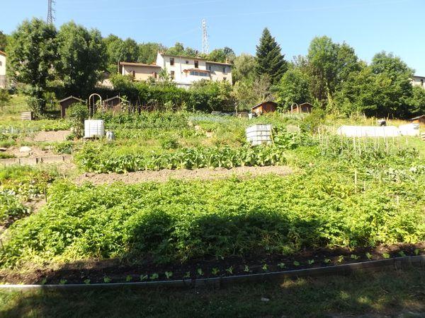 Le beau jardin de Julien