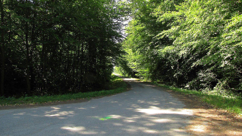 le carrefour du Plessis-Brion
