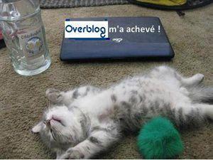Overbloguée (passage à la nouvelle version)