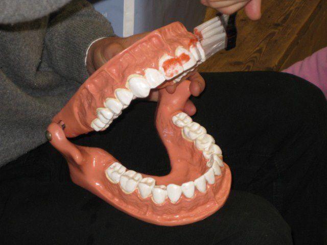 Album - photos-orthodontiste