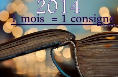 Mon seul et unique challenge de 2014 : le challenge 1 mois = 1 consigne