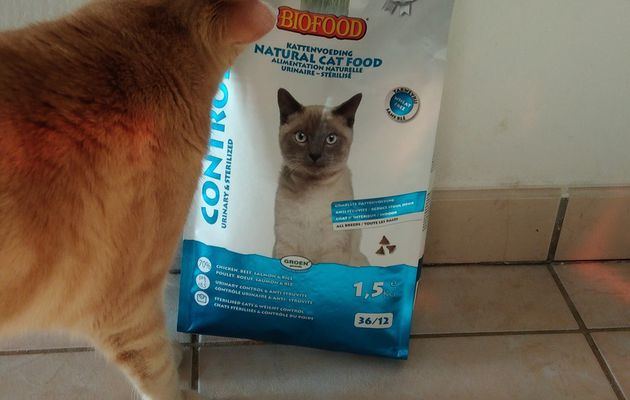 Oliver a testé les croquettes control urinary & sterilized BioFood
