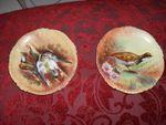 Assiettes en porcelaine de Limoges