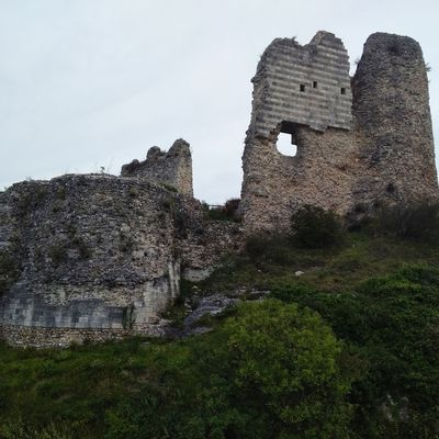 Visite de Château Gaillard