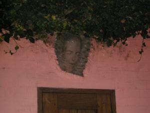 Le carré des artiste,sa vigne,ses fleurs et son potager