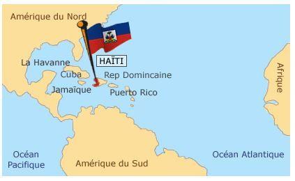 Haïti, la forêt menacée de disparition