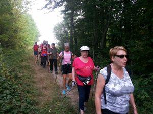 Groupe rando 8 km Villeneuve - Montflageol - Bellot - Verdelot