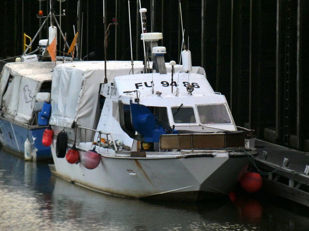 et la gamme de d/étection de profondeur de 100m 980ft LUCKY D/étecteur de poissons pour bateau dapp/ât avec la gamme dop/ération sans fil de 300m 300ft