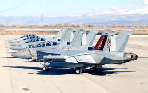 """New CAG bird 2015 for the Electronic Attack Squadron 133 (VAQ 133) """"Wizards"""""""