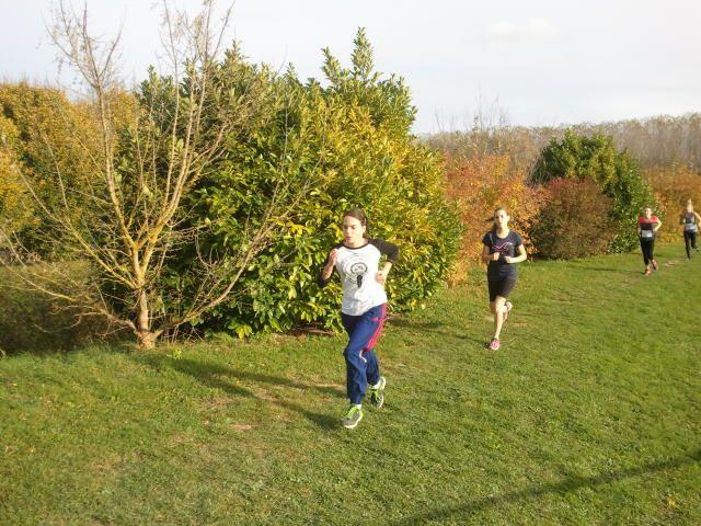 Cross de district et Run and Bike Romilly 2014