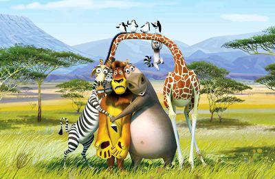 Madagascar - Dessin animé - Animaux - Wallpaper - Free