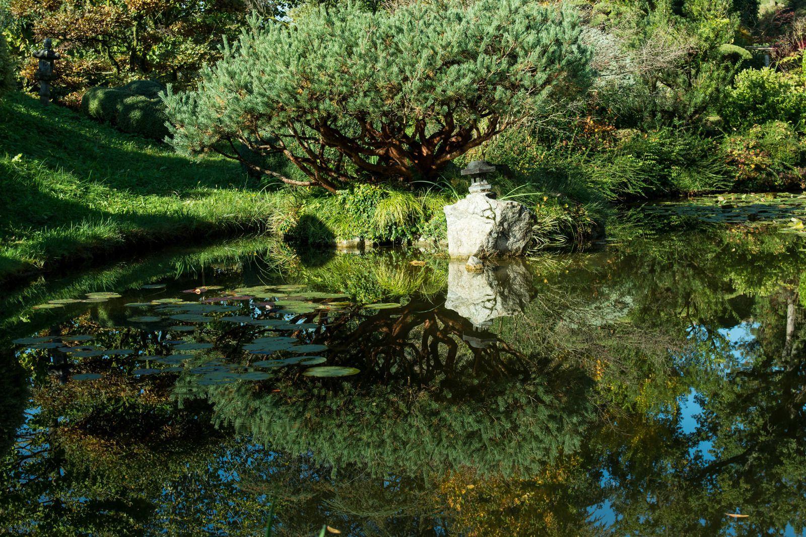 Jardin Zen en Automne