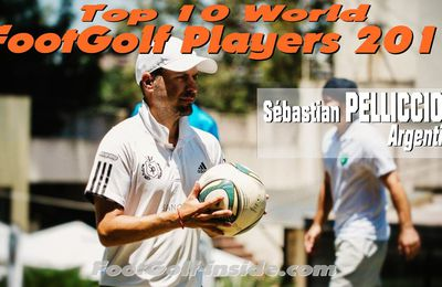 Top 10 players 2017 : Sébastian PELLICCIONI