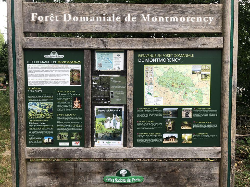Randonnée «Post-Confinement » dans la forêt de Montmorency, 15,2 km