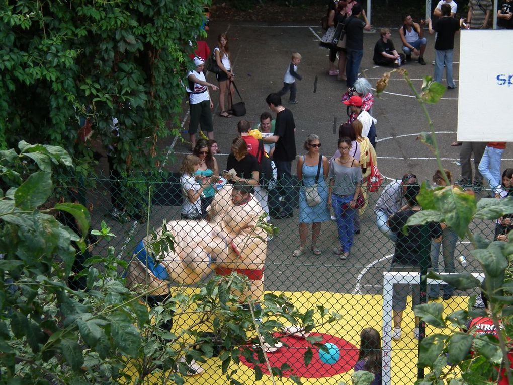 les animaux du parc