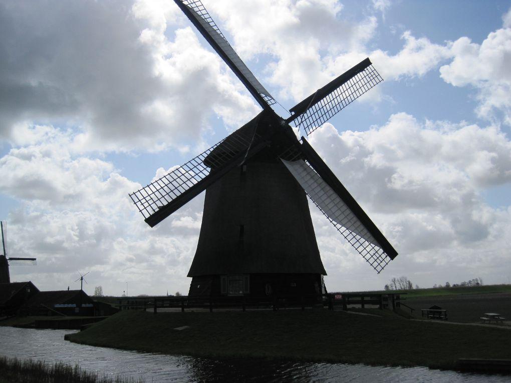 2011 - Pays-Bas