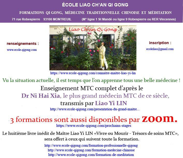 TROIS FORMATION QI GONG/MTC/MÉDITATION AVEC MAITRE LIAO, AUSSI POSSIBLE PAR ZOOM